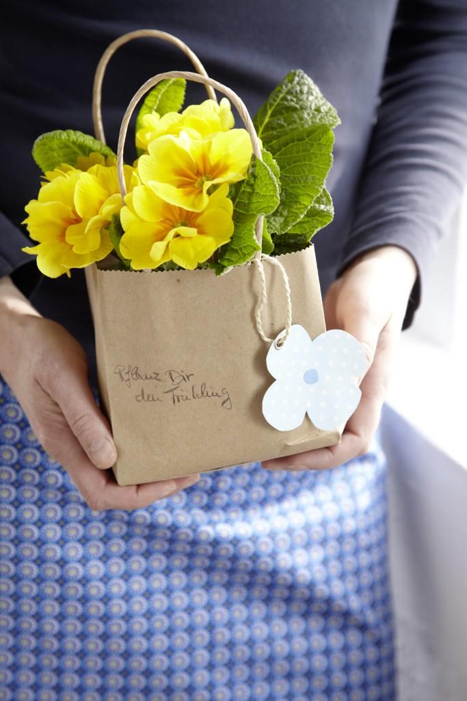 """""""Pflanz dir den Frühling"""" doch einfach in eine kleine Papiertüte; dazu erst den Wurzelballen der Primel in eine Plastikhülle stecken oder mit Alufolie umwickeln und dann in die Tüte stellen; jetzt noch eine Blüte aus Pappe ausschneiden, mit Bindfaden anhängen – fertig ist der Frühling zum Verschenken oder als Mitbringsel zum Brunch mit der besten Freundin."""