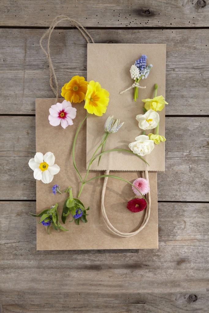 Kleine Frühlingsideen